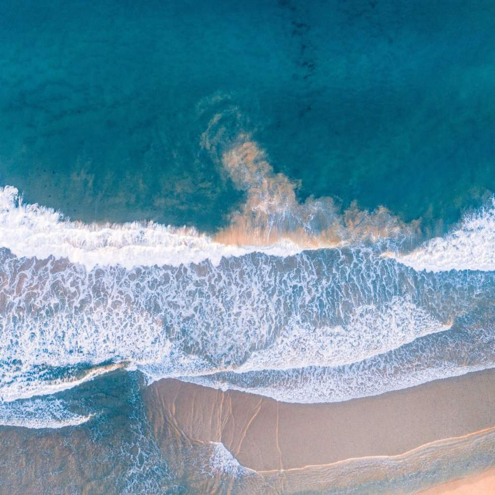 ビーチの澄んだ水